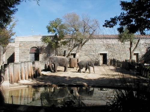 The South Elevation of the Elephant House at the Smithsonian's National Zoological Park shows evidence of exterior masonry walls.