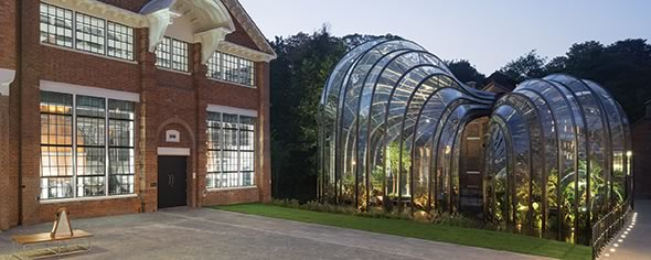 The new glasshouses are used to grow the botanicals for Bombay Sapphire's gin.