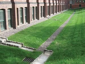 Waltham Raingarden drainage restoration mixed-use brick